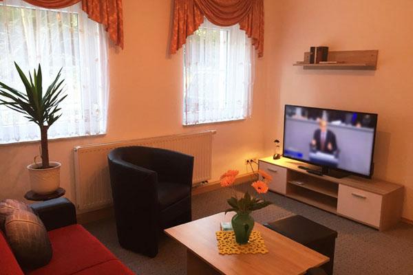 Ferienwohnung Sebnitzer Straße Aufenthaltsbereich mit Fernseher